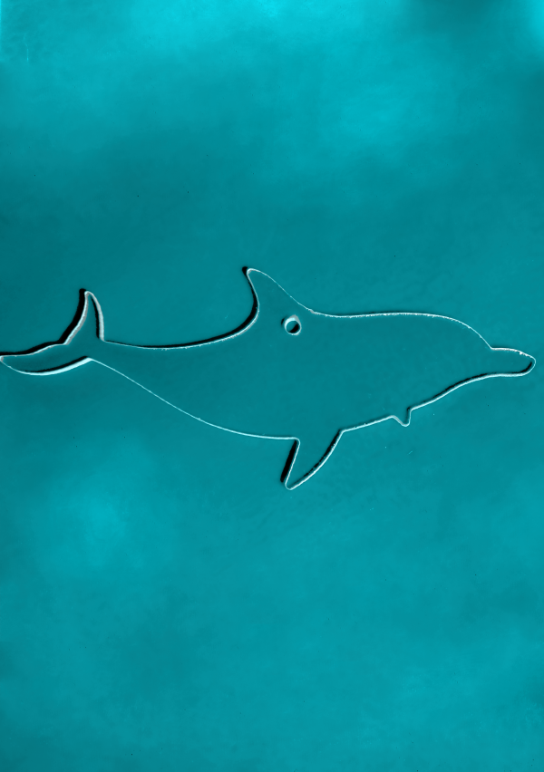 Dolphin-1-1.png